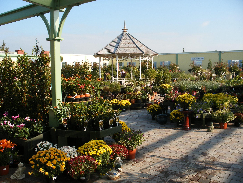 Garden Centre 2