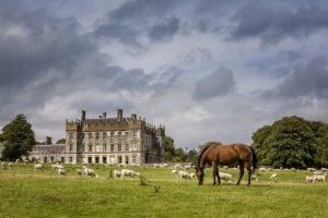 Borris House - Fáilte Ireland image